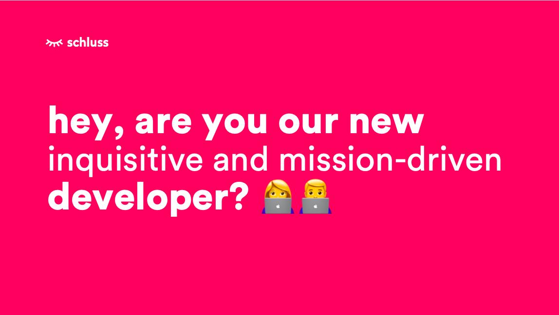 Developer vacancy Schluss